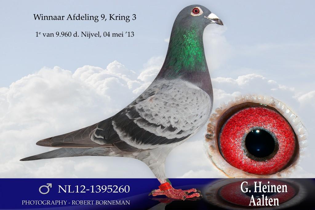 NL12-1395260_org