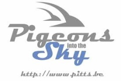 banner Pitts Website