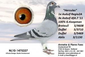 NL10-1475337