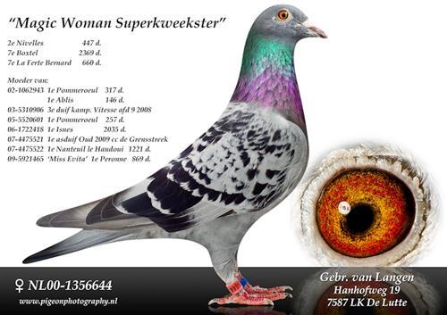 NL00-1356644_magic_woman